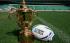 The Webb Ellis Cup will be on display in Milton Keynes
